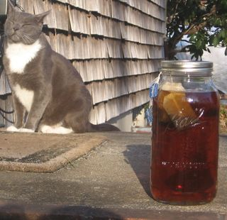 Sun Tea w Shadow